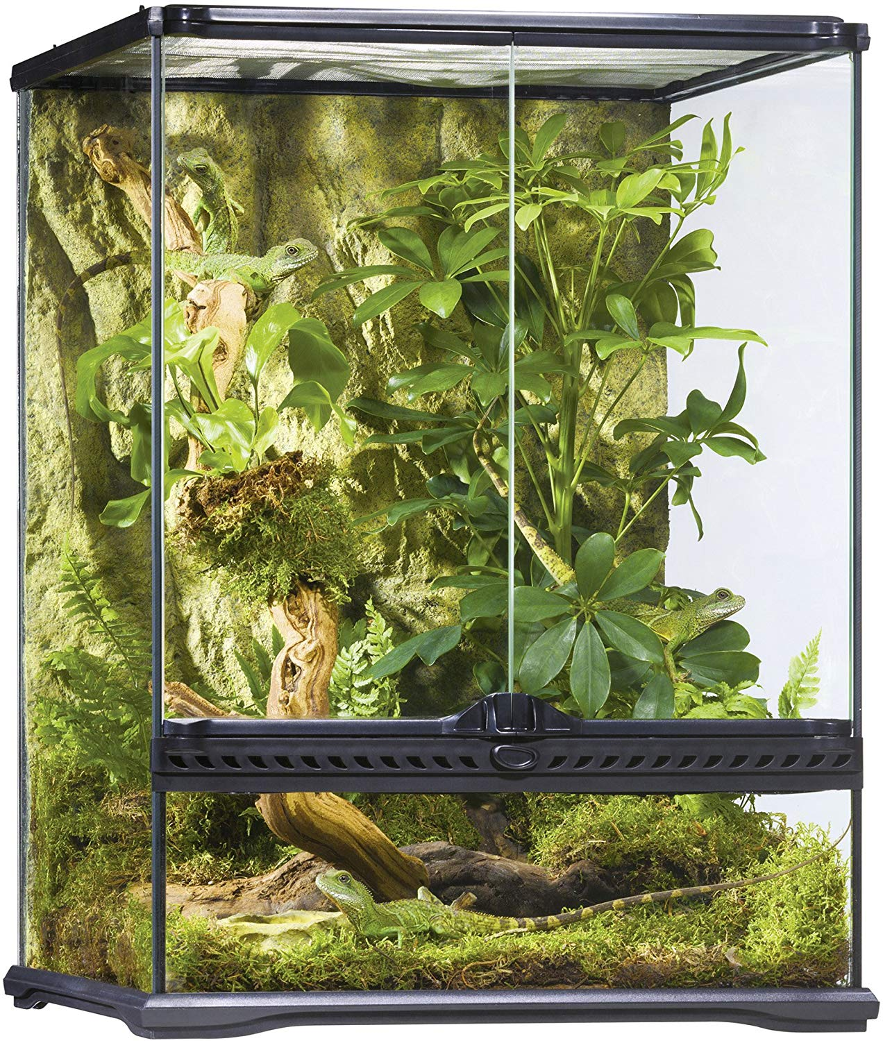 Exo Terra All Glass Terrarium is a good venomous snake cages