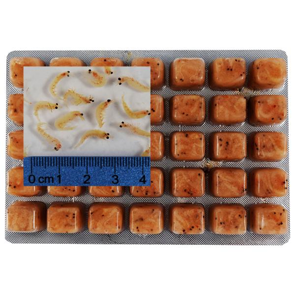 Image result for frozen food for fish
