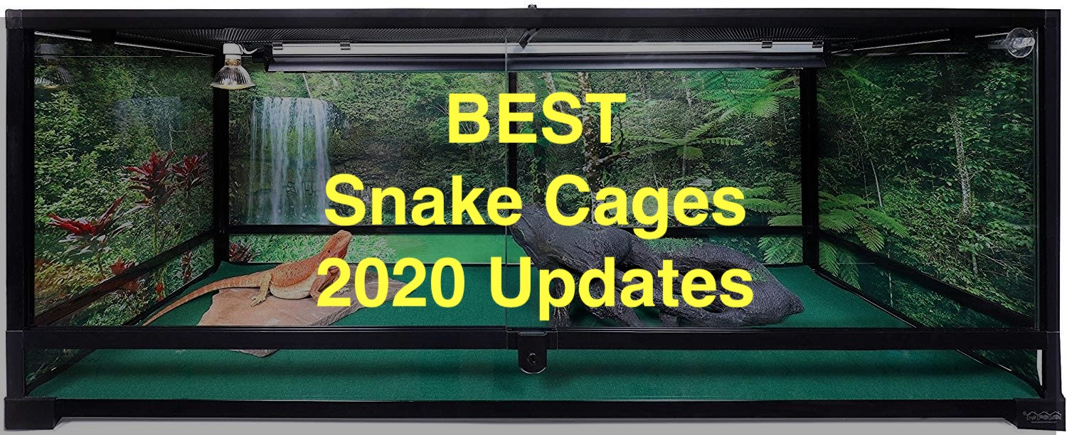 Photo of Top 5 Best Snake Cages (Include Buyers Guide)