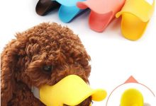 Photo of What dog masks you should buy? 03 Common types of dog masks muzzle with reviews