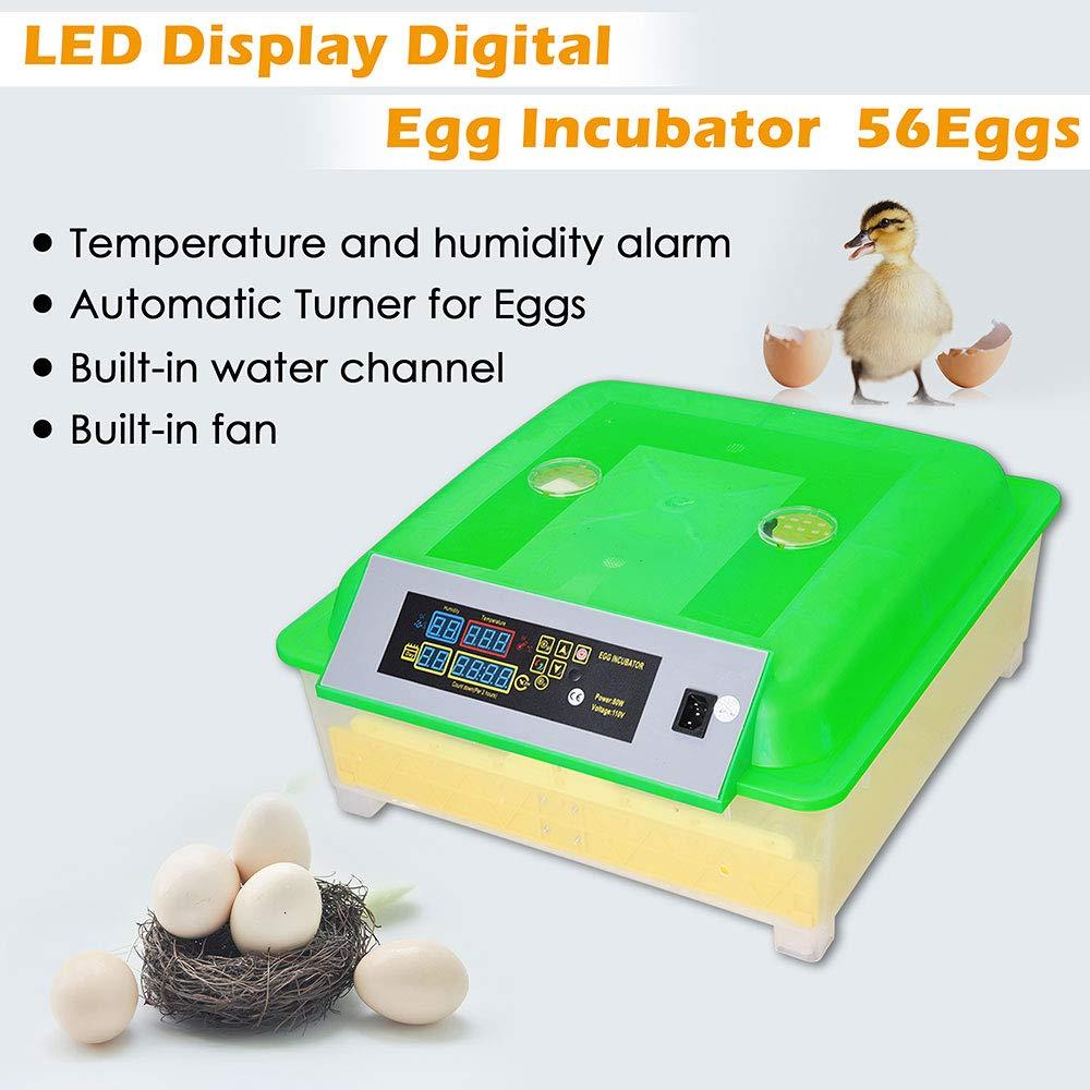 Yescom 80W Digital 56 Reptile Egg Incubator