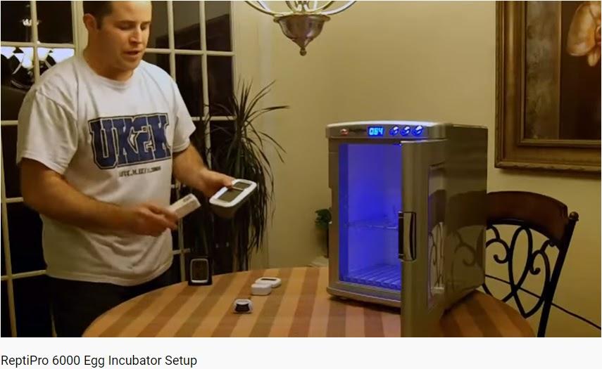ReptiPro 6000 Egg Incubator gadgets   Setup
