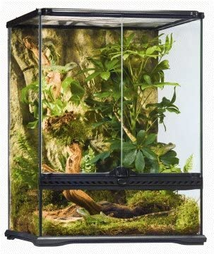 snake cage help provide good environment for your snake