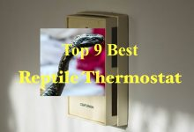 Photo of Best Reptile Thermostat reviews – Updated June 2020