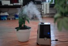 Photo of A review of 59+ Reptile and Amphibian humidifiers