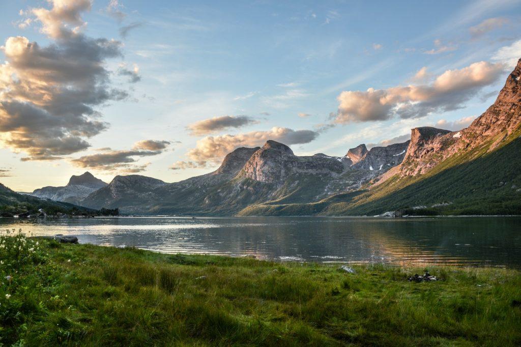 Norway wild is nice