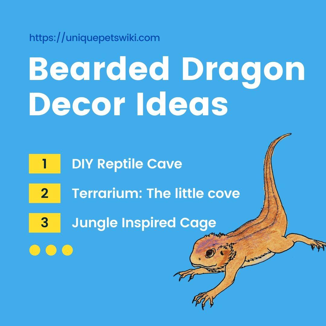 11 Different Ideas Diy Decor Your Bearded Dragon Reptiles