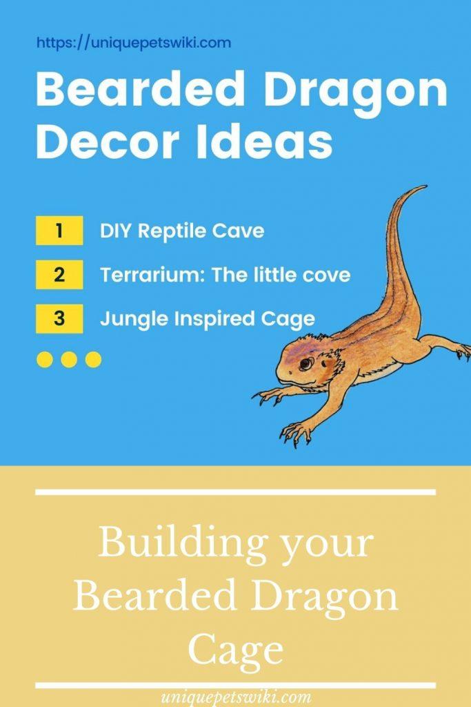 Bearded dragon Tank Décor Ideas