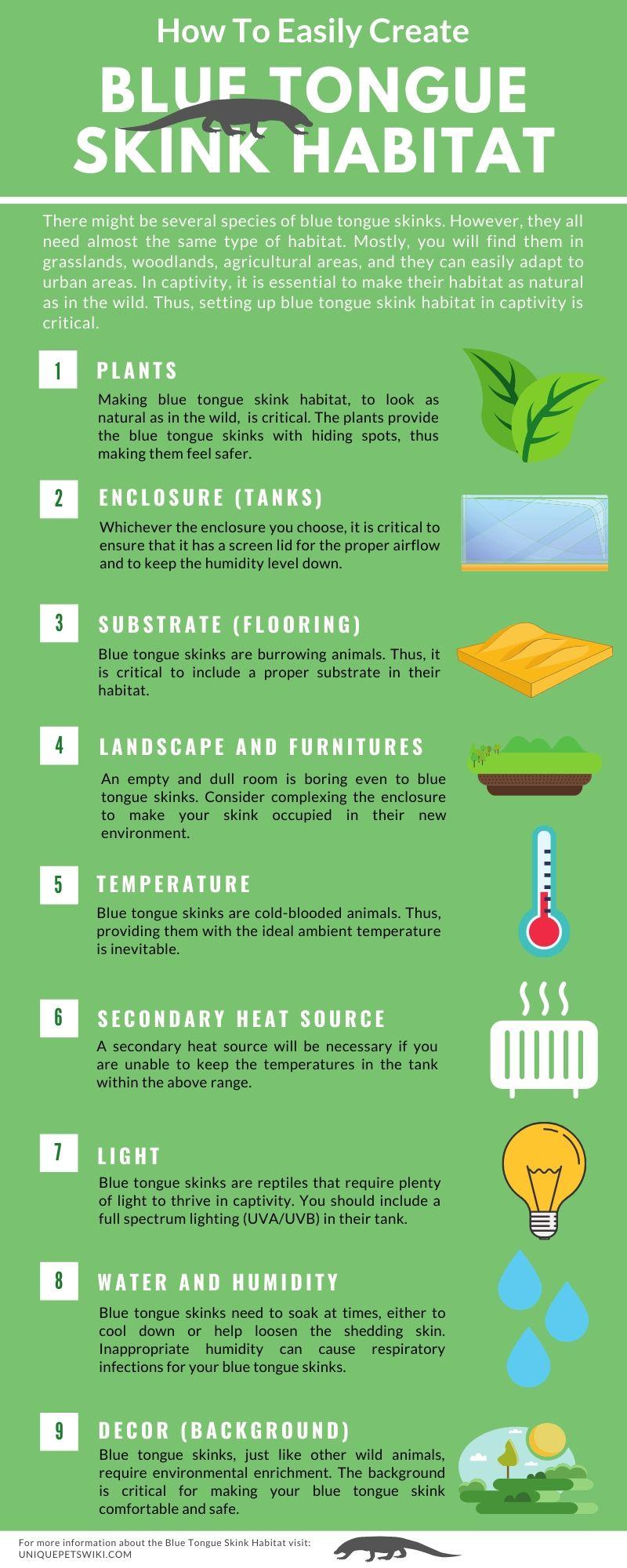 create blue tongue skink habitat