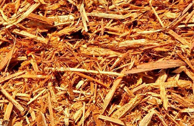 Mulch Substrate