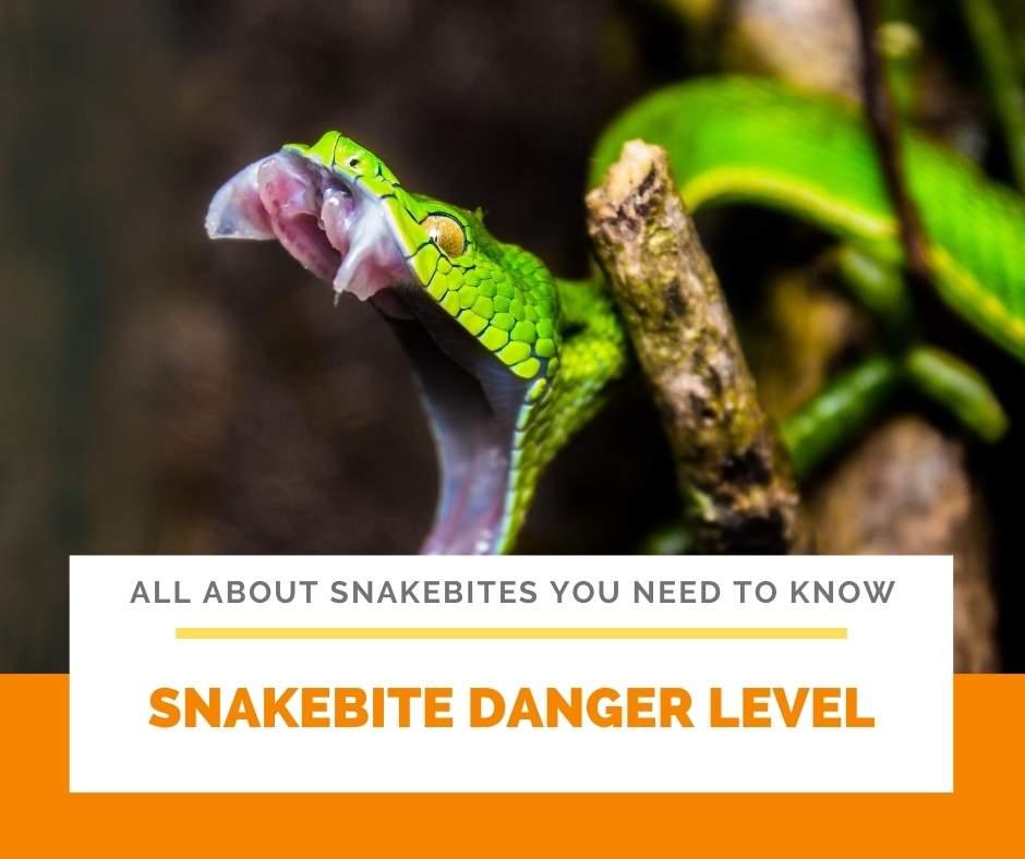 Snakebite Danger Level