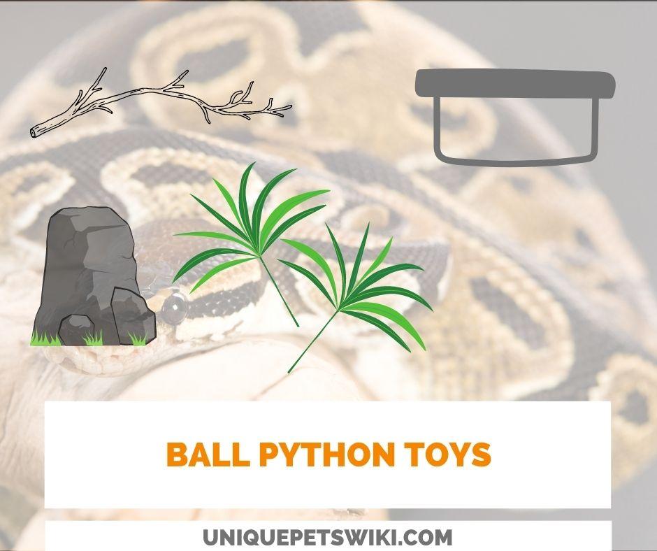 Ball Python Toys