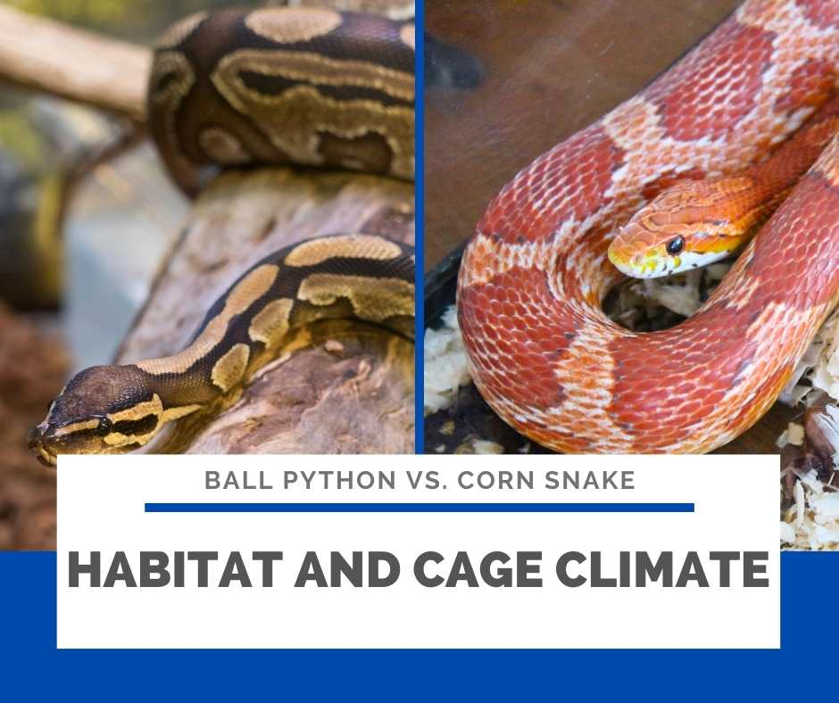 Habitat And Cage Climate