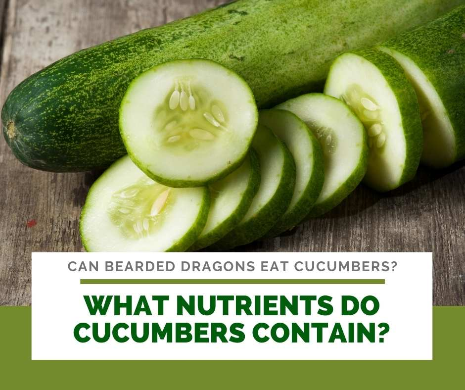What Nutrients Do Cucumbers Contain?