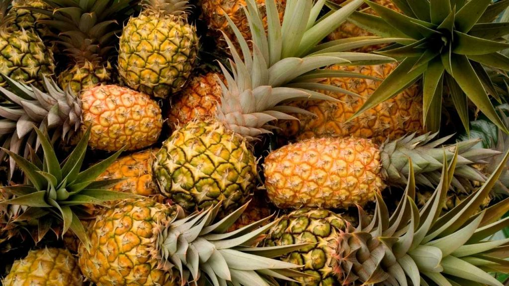 Nutritional Profile Of Pineapples