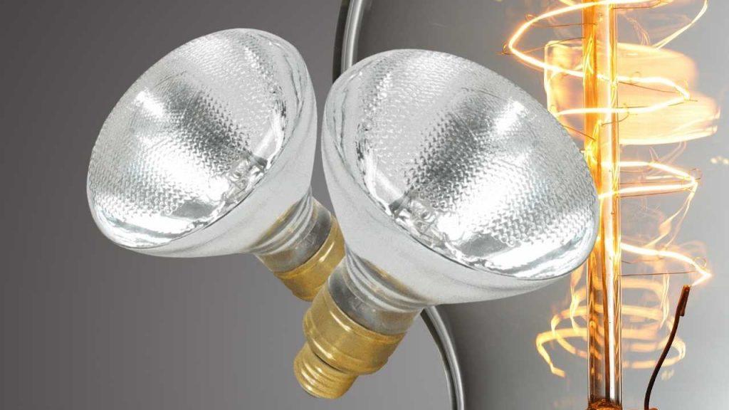 Best Mercury Vapor Bulb For Bearded Dragons